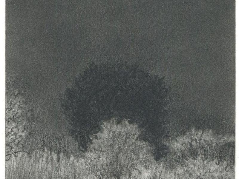 """Villalpando - 2 Serie  """"dibujos y otras historias"""""""