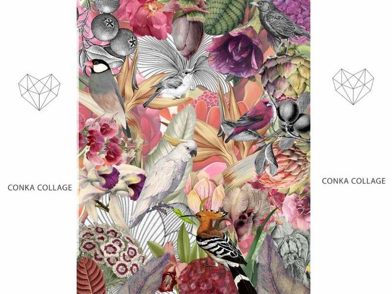 Conka Collage - Pájaros jungla rosada
