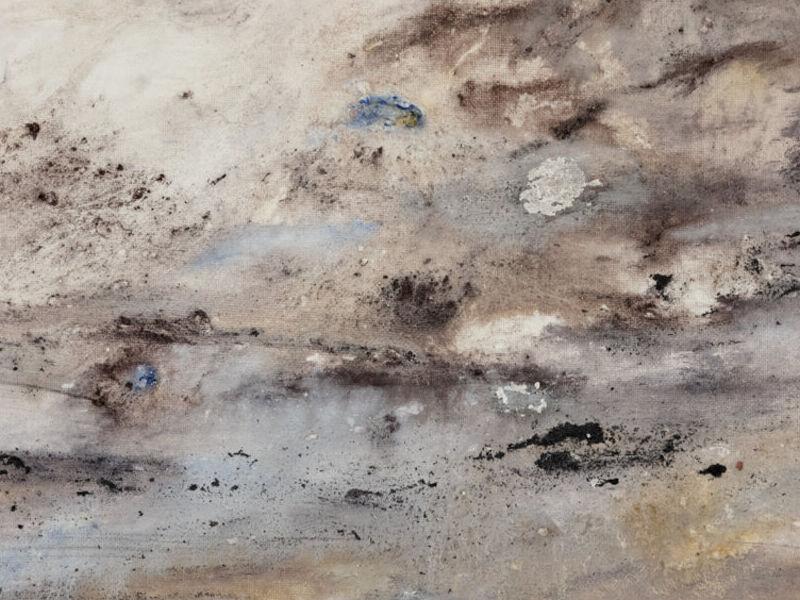 La Tierra en Silencio - Marcela Iglesias