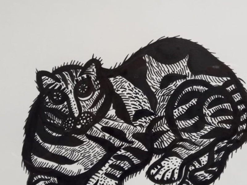 Ana Fernandez / Gato de Paula